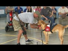 Patriot PAWS (Texas Country Reporter) - YouTube
