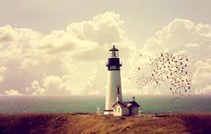 Фото обои побережье, море, домик, маяк, небо, горизонт, стая птиц, облака
