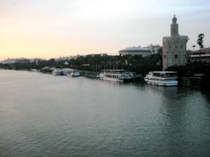 Sevilla, Spain. In love.