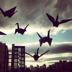 we love #origami #birds #fly