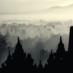 Such a pretty place to visit! A must go!  Borobudur Temple - Indonesia