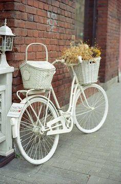 .bicicletas