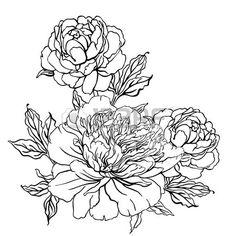 http://us.123rf.com/450wm/varka/varka1312/varka131201416/24625258-vintage-hand-drawing-background-with-flowers-vector-illustration-isolated.jpg