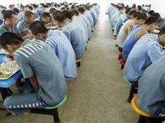 Kina ndalon marrjen e organeve nga të dënuarit - http://www.top-channel.tv/artikull.php?id=262210