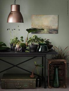Pots et vases Sinnerlig Ikea Livet Hemma via Nat et nature Sweet Home, Sweet Sweet, Sinnerlig Ikea, Dark Green Walls, Olive Green Walls, Turbulence Deco, Dark Interiors, Green Rooms, Green Living Room Paint