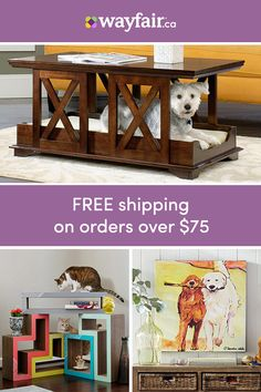 Dog Bed - One-of-a-kind - Long Term Test Animals And Pets, Cute Animals, Deco Cool, Pet Gate, Dog Houses, Pet Accessories, Dog Life, Decoration, Cats And Kittens