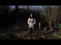 Allotment Qigong - YouTube