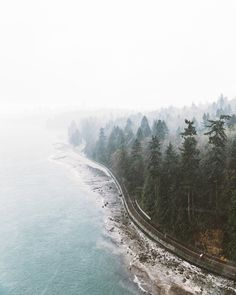 View from Lions Gate Bridge, Vancouver, BC. | Rishad Daroowala Photography : Photo