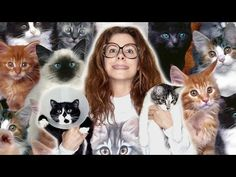 Crazy Woman Lives With 130 Cats - http://positivelifemagazine.com/crazy-woman-lives-with-130-cats/