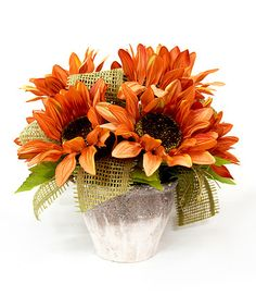 Another great find on #zulily! Rustic Potted Orange Fall Sunflower Arrangement #zulilyfinds