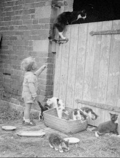 July 1943 at Crow Park Farm Sutton-on-Trent, Nottinghamshire.