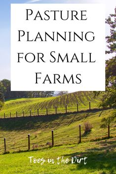 Pasture Planning on Small Farms Toes in the Dirt Good pasture planning is essential on a small farm. You only have so much acreage and you need t