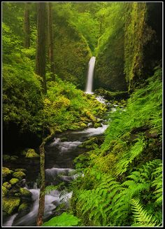 Columbia River Gorge, Oregon, USA