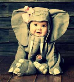 Boyle Nash Pierce Will You Take Pictures Of My Future Child in An Elephant Costume So i Can Frame it And Give it Too You? You Know Cause Your God Child in An Elephant Costume Would Be The Greatest Thing Ever? So Cute Baby, Baby Kind, Cute Kids, Cute Babies, Baby Baby, Baby Dumbo, Funny Babies, Halloween Bebes, Baby Halloween Costumes
