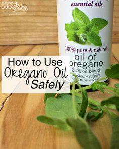 How to Use Oregano Oil Safely | With autumn in the breeze, winter soon to follow, and many of our kids back to school, virus season is just around the corner. Oregano oil is often in the spotlight as an excellent herbal remedy. Here's how to choose and use oregano oil wisely. | TraditionalCookingSchool.com