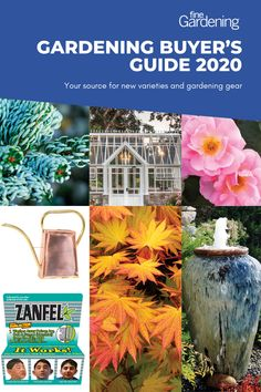 New plant varieties and gardening gear for this year.