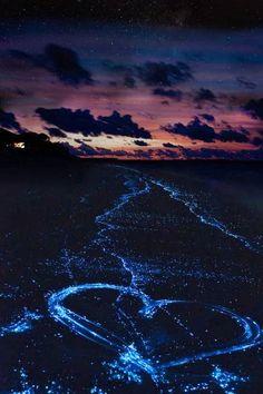 Bio Bay - Bahía bioluminiscente en Puerto Rico