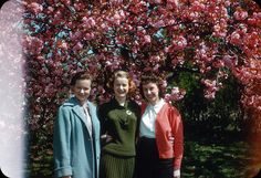 vintage everyday: '50s Ladies in Kodachromes: Looking Back to Women Fashion Over 60 Years Ago