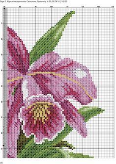 Photo Counted Cross Stitch Patterns, Cross Stitch Designs, Cross Stitch Embroidery, Hand Embroidery, Butterfly Cross Stitch, Cross Stitch Rose, Cross Stitch Flowers, Cross Stitching, Wall Photos