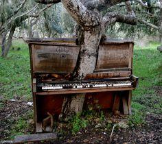 Abandoned Piano in California