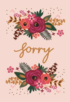 34 Apology Cards Ideas Apology Cards Sorry Cards Cards