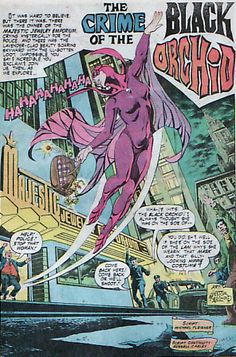Nestor Redondo's Black Orchid, from Phantom Stranger #32.