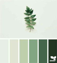 green - greenery - plants