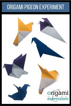 Folding instructions origami fox o r i g a m i pinterest the origami pigeon experiment sciox Choice Image