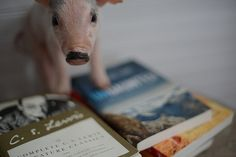 10 Books for Soul Growth  Some happy reading recently here on the farm ... Here what's on the bookstand {besides um... a little piggie!}:   Fully Alive: Lighten Up and Live - A Journey that Will Change Your LIfe  Ken Davis is truly one of the best speakers