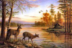 Deer HD Wallpapers, http://www.firsthdwallpapers.com/deer-hd-wallpapers.html