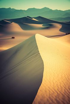 Stand in a desert and admire the endless dunes.