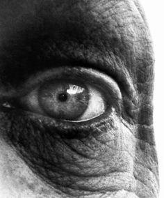 Bill Brandt - Jean Dubuffet, 1960 #eyeball #photography