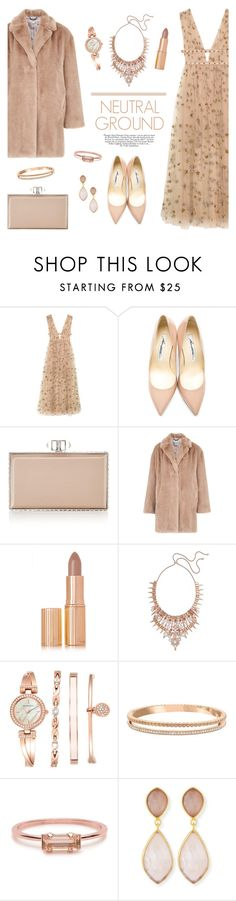 """Cool Neutrals"" by lgb321 ❤ liked on Polyvore featuring Valentino, Brian Atwood, Judith Leiber, Whistles, Charlotte Tilbury, Kendra Scott, Anne Klein, Swarovski, Bing Bang and Dina Mackney"