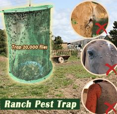 GET RID of flies buzzing around your yard using our Ranch Pest Trap! Trap those pesky flies and leave you and your barn at peace! Proven the most effective and efficient way to trap up to Flies Outside, Get Rid Of Flies, Rotten Fruit, Fly Traps, Pet Supply Stores, Iron Wire, Buy Pets, Online Pet Supplies, The Ranch
