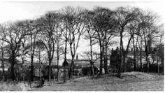 Radcliffe, Black Lane Small Wood 1971