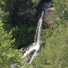 Natural Waterfalls are my biggest inspiration. This is Piney Creek Falls, one of my favorites. Natural Waterfalls, Natural Swimming Pools, Ponds, Patio, Nature, Outdoor, Inspiration, Natural Pools, Outdoors