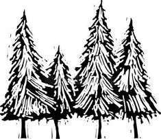 Woodcut Illustration of Pine Trees