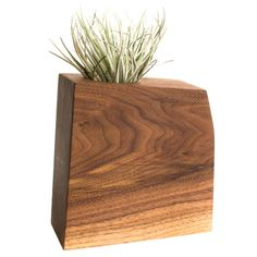 "These planters are made from thick blocks of Walnut or Hickory that are laminated together and then cut into a abstract geometric shape. After they are carefully sanded smooth, a hand rubbed danish oil is applied for a matte finish. Each planter comes with a glass holder the perfect size for a 2"" succulent, as well as white rocks for drainage and decoration and a care instruction booklet. These planters also look stunning featuring a large Tillandsia, or ""Air Plant"". Cork feet on the bottom…"