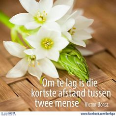 Strong Quotes, Positive Quotes, Afrikaans Quotes, Printable Quotes, Things To Think About, Inspirational Quotes, Hart, Life Tips, Laughter