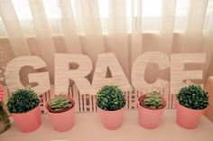 Dessert Table at Grace's Christening Party styled by Something Pretty Manila Photo by Sugarpuff Photography #PinkandWhite #shabbychic #succulents