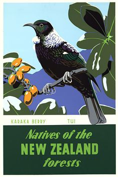 Natives of the New Zealand Forests.  Beautiful vintage travel poster  http://www.vintagevenus.com.au/products/vintage_poster_print-tv778