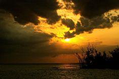 http://fineartamerica.com/featured/captiva-island-ends-the-day-kandy-hurley.html?newartwork=true Kandy Hurley