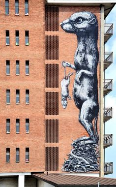 Rodent Hanging...  Street Art...  Let him go, you weasel!