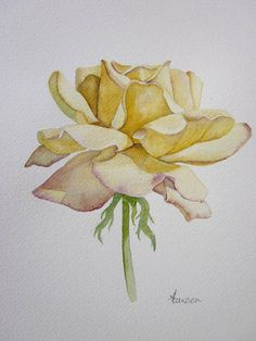 Original watercolour rose painting ~ Deep yellow rose by AnneLawsonArt on Etsy Arches Watercolor Paper, Watercolor Rose, Watercolour Painting, Yellow Rose Tattoos, Art Drawings, Rose Drawings, Drawing Flowers, Drawing Art, Plant Drawing