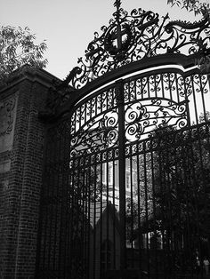 Harvard University....walked thru these Gates