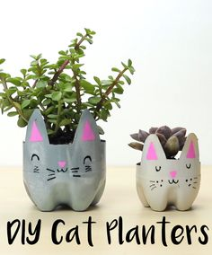 How to make cat planters out of old plastic bottles #diyplanters