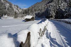 Erlebnisreiche Winterpauschalen im Wanderhotel Kirchner, Bramberg Outdoor, Ski Resorts, Winter Vacations, Winter Landscape, Ski, Treehouse, Outdoors, Outdoor Games, Outdoor Living