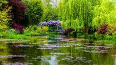 Monet's water garden in Giverny, France (© Oleg Bakhirev/Shutterstock)