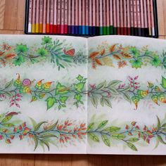 Colored pencil page Garden Coloring Pages, Secret Garden Coloring Book, Coloring Book Art, Colouring Pages, Colored Pencil Artwork, Colored Pencils, Joanna Basford Secret Garden, Enchanted Forest Coloring Book, Colored Pencil Tutorial