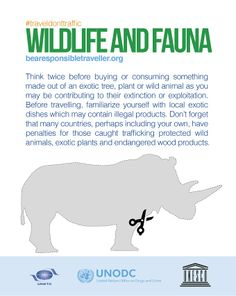The illegal killing of protected wild animals and the illegal exploitation of plants and forests are crimes that have a devastating impact on the environment, local livelihoods and biodiversity. Think twice before buying or consuming something made out of an exotic tree, plant or wild animal as you may be contributing to their extinction or exploitation.   Visit http://www.bearesponsibletraveller.org or http://j.mp/1fHvqFu for more on this and make sure you #traveldonttraffic!